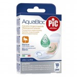 PIC AQUABLOC flasteri